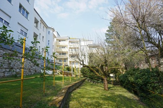 Blick auf den Anbau in der Lepsiusstraße 117 A und B. Im Vordergrund befindet sich eine Gartenfläche mit Bäumen und Sträuchern.