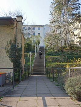 Blick auf die Treppe, die auf dem Gelände des Blindenhilfswerkes Berlin e.V. zum Gebäude in der Lepsiusstraße 117 führt. Eine Person mit gelber Armbinde geht gerade hinauf.