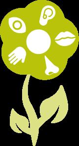 Grafische Darstellung einer Blume. In den einzelnen Blütenblättern sind die Symbole der einzelnen Sinne abgebildet.